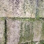 bricolage-traiter-mur-toiture-mousse-algue-lichen-3