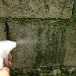 bricolage-traiter-mur-toiture-mousse-algue-lichen-4